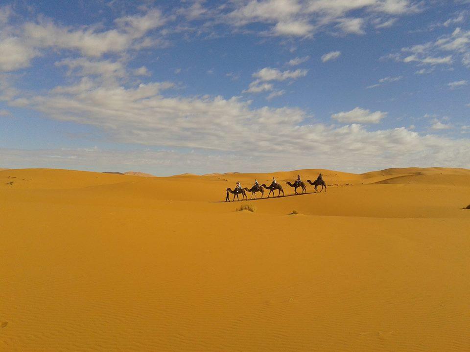 caravana-del-desierto-grupo-yoga
