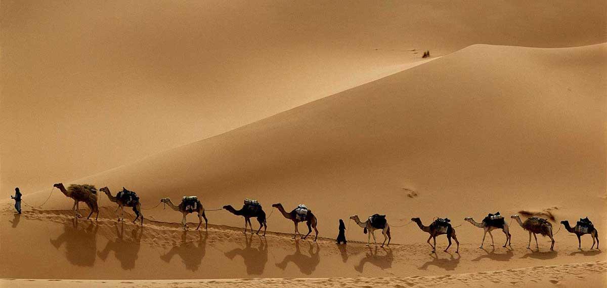 yoga-en-el-desierto-caravana-meditacion
